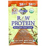 Garden Of Life RAW Organic Protein Van. Spiced Chai Packets (15 Pkts)