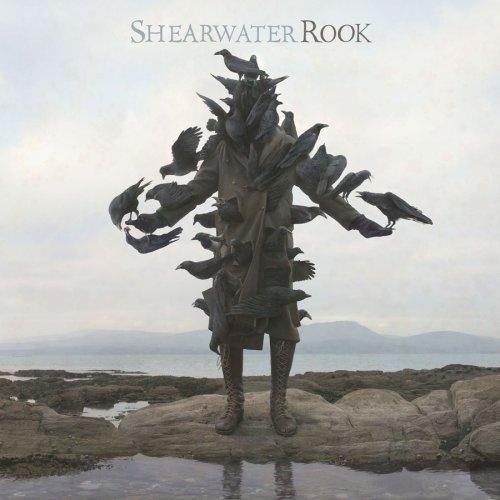 Shearwater -- Rook