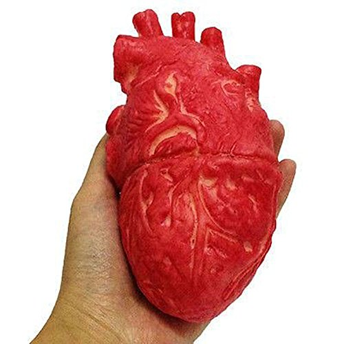 New Halloween Horror Props Lifesize Heart Haunted House Party Scary Decorations