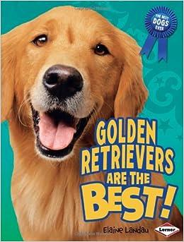 The Ultimate Golden Retriever Training Guide