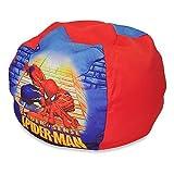 Marvel Spiderman Bean Bag Chair for Kids