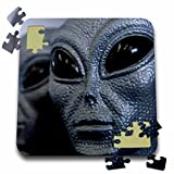 Danita Delimont - New Mexico - Silver alien heads, Roswell, New Mexico - US32 JMR0110 - Julien McRoberts - 10x10 Inch Puzzle (pzl_92634_2)
