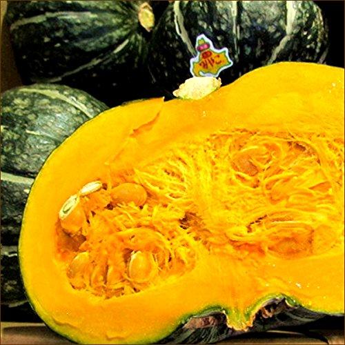 北海道産 共選 大浜みやこ かぼちゃ 3玉入り(1玉 1.6kg)