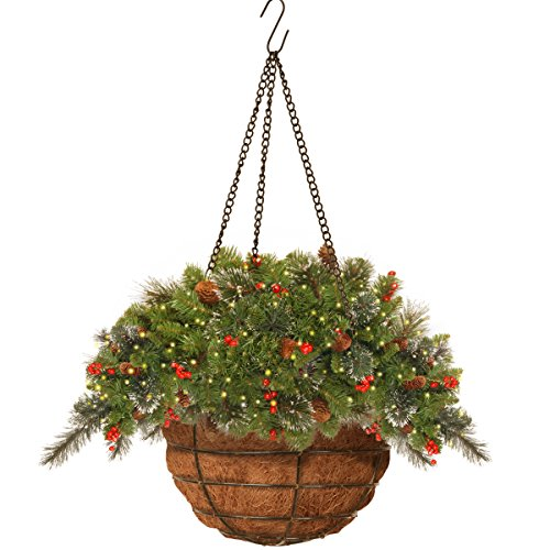 ABOVE - Lovely Crestwood Spruce Hanging Basket with 150 LIGHTS!