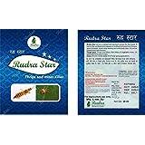 Krishi Mandir Rudra Star - 20 Ml