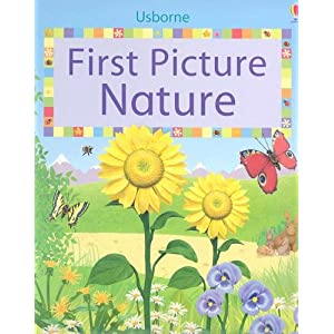 First Picture Nature (First Picture Board Books)