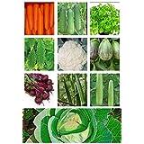 Imperial Vegetables Seeds Combo Of 10 In 1 - Beetroot + Bhindi /Lady Finger + Bitter Gourd + Bottle Gourd + Brinjal...