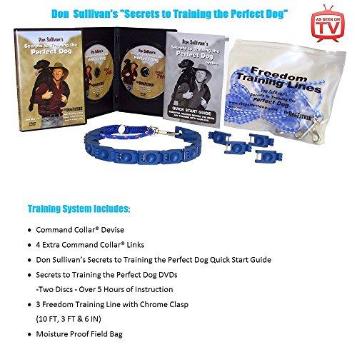51eFP91Z4sL - Basic Dog Training Tips For Beginners