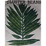 Naga Agency Cluster Beans Seeds (White With Black, Pack Of 1 X 100 Grams)