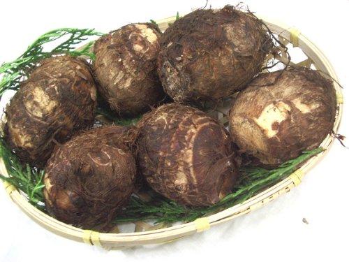 九州産 里芋(さといも・サトイモ)1kg  九州の安心・安全な野菜! 【九州・宮崎産・熊本産・大分産】