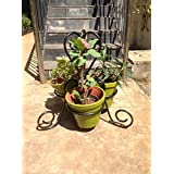 The Garden Store Small Planter 3 Pot Stand With Pot