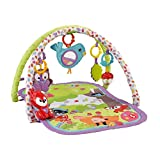 Fisher-Price 3-in-1 Musical Activity Gym, Multi Color
