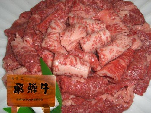 【肉のひぐち】飛騨牛切り落とし焼肉500g(冷凍)