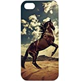 Casotec Rising Horse Design Hard Back Case Cover For Apple IPhone 5 / 5S