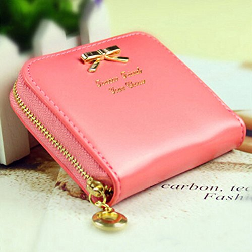 Abbigliamento Lady Faux Titolari Card Pelletterie Wallet Purse Mini sanitarie (anguria)