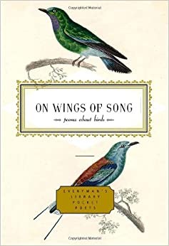 Glossary of bird terms