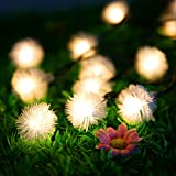 Homdox Outdoor Solar String Lights 4.8m 20 LED Waterproof Christmas Decorations Lights For Indoor Garden Tree...