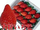 超大粒イチゴやよいひめ(15個入り)甘くて酸っぱくないいちご