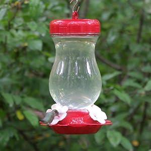 Perky Pet 24 oz. Glass Top Fill Hummingbird Feeder