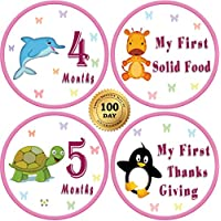"25 Pack Of 4"" Premium Monthly Baby Stickers With Milestones & Holidays - Birthday Shower Gift For Girls - Watch..."