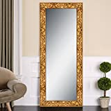 Elegant Arts & Frames Antique Gold Wall Decorative Synthetic Full Size Mirror 20 Inch X 60 Inch