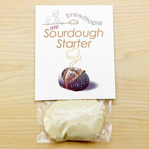 Sourdough Starter - Live