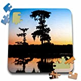 Danita Delimont - Alison Jones - Sunsets - USA, Louisiana, Lake Martin, sunset, bald cypress in water. - 10x10 Inch Puzzle (pzl_189355_2)