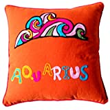 Homeblendz Cotton Aqurius Zodiac Design With Wool Embroidary Rust 40x40 Cushion Cover