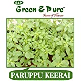 Green & Pure - High Yield Organic Vegetable Seeds - Paruppu Keerai - Pack Of 3 For Kitchen / Terrace / Home Garden