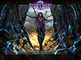 32x24 inch StarCraft 2 Heart of the Swarm Silk Poster 8GS5-230