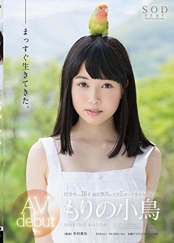 もりの小鳥 AV debut [DVD]
