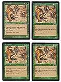 Rabid Wolverines Playset of 4 (Magic the Gathering : Exodus Common)