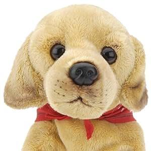 Amazon.com: FAO Schwarz 10 inch Floppy Dog Plush - Yellow