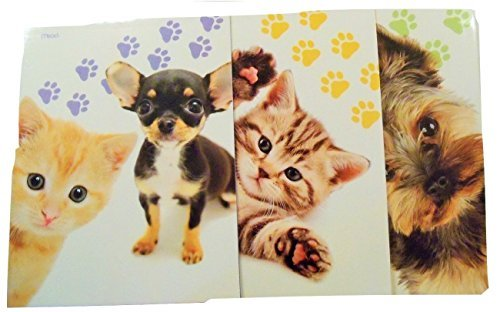 Animal Folder 3 Pack ~ Puppy Kitten Paw Fun (Kitten And Puppy, Paws Up, Terrier Pup)