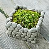 Square Stone Breathab Earthen Flower Pot Succulent Plants Flowerpot Home Garden Landscape Decoration -