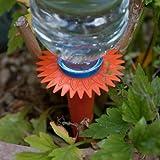Caraselle Wasserspender Bewässerungssystem für Pflanzen
