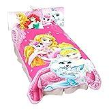 Disney Princesses Palace Pets Wonderful Love Microraschel Blanket, 62 By 90-Inch