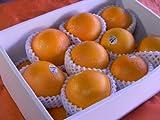 新物カリフォルニア産ネーブルオレンジ大玉18個