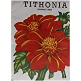 Naga Agency Tithonia Seeds (Black, Pack Of 1 X 100 Grams)