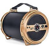 IBall Music Karaoke Barrel V 2.0 Bluetooth Portable Speaker With Wireless MIC & Remote Built In FM Radio