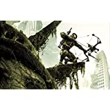 Crysis (F) Game Poster - 12x19 Inch Art Material