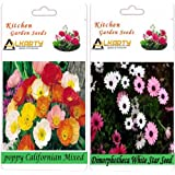 Alkarty Poppy Californian Mixed And Dimorphotheca White Star Flower Seeds Pack Of 20 (Winter)