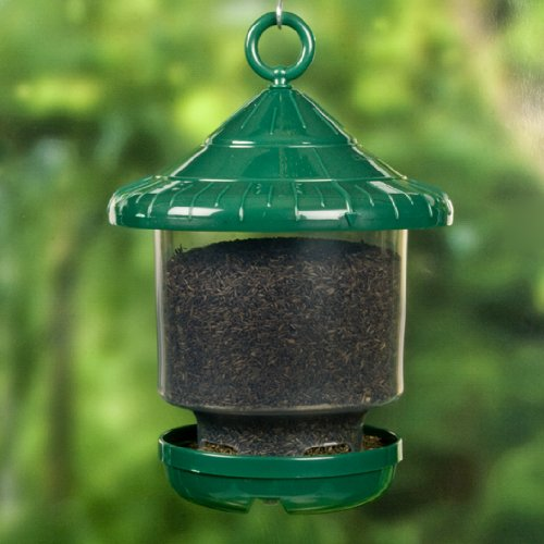 awesome clingers only feeder bird seed feeders bird feeders songbird essentials se7012 clinger only bird feeder green 755