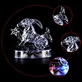 Coolplay CP9053A DIY 3D Crystal Puzzle with Flash Light Constellation Series - Capricorn