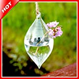 Home Decor Bicuspid Hanging Glass Vase Air Plant Terrarium Globe Crystal Hydroponic Container Creative Wedding...