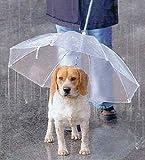 ペット用 傘 小型犬?中型犬くらいまで わんちゃんお散歩用傘 雨の日の散歩も大喜び♪