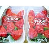 【贈答用】和歌山県生まれの新品種 いちご 「まりひめ」 大粒 苺 2パック