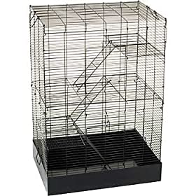 PETCO Rat Manor Habitat