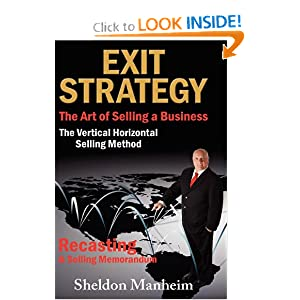 Exit Strategy: The Art of Selling a Business: The Vertical