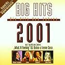 Big Hits: Die Hits Des Jahres 2001